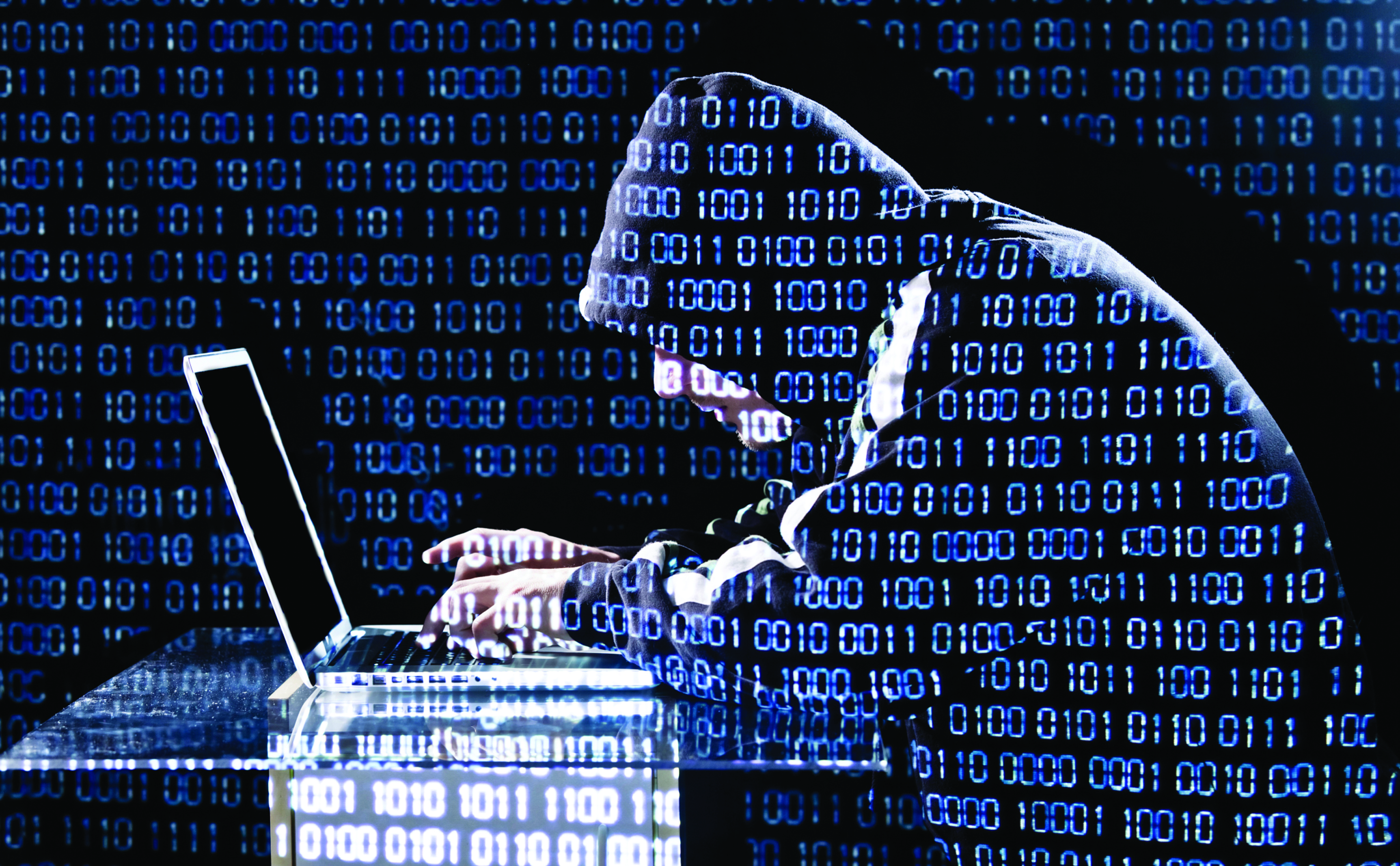 Fighting cyber-crime: pointers for Govt