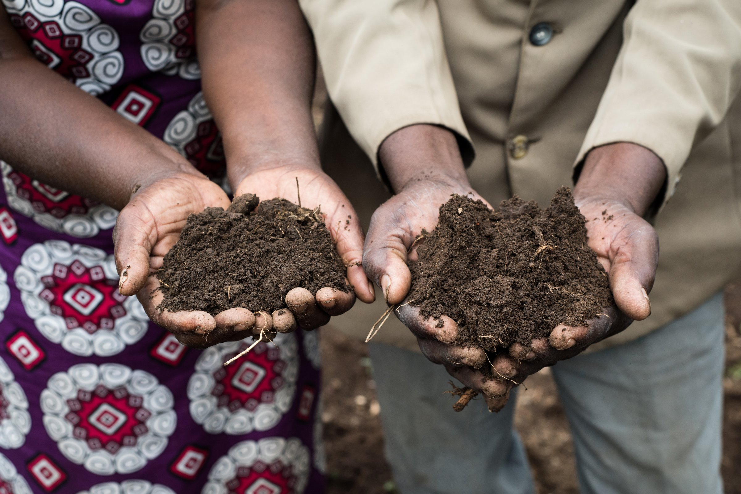 Agrarian aggression, revolution or regression: Which way Kenya's agriculture?