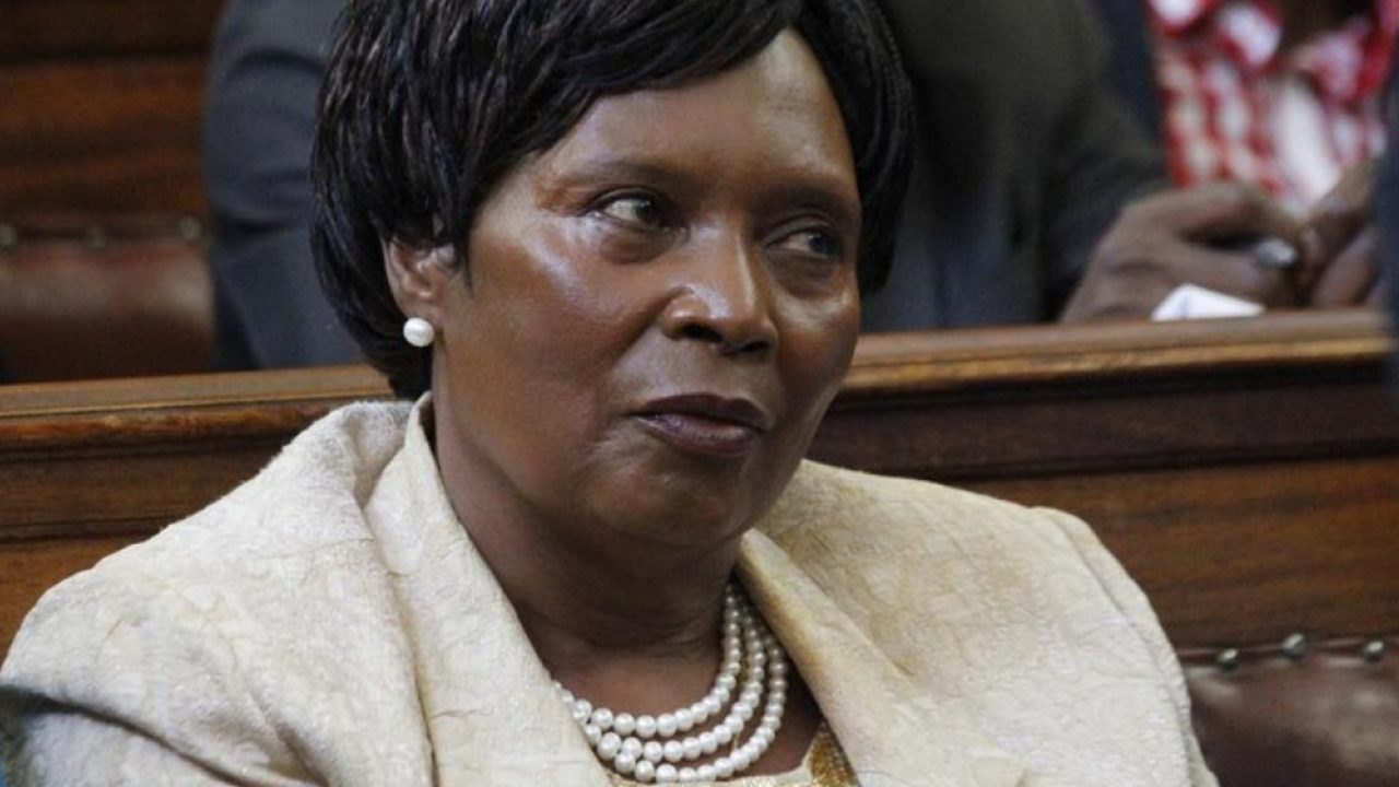 Judiciary lands Mary Wambui a blow in new appointment