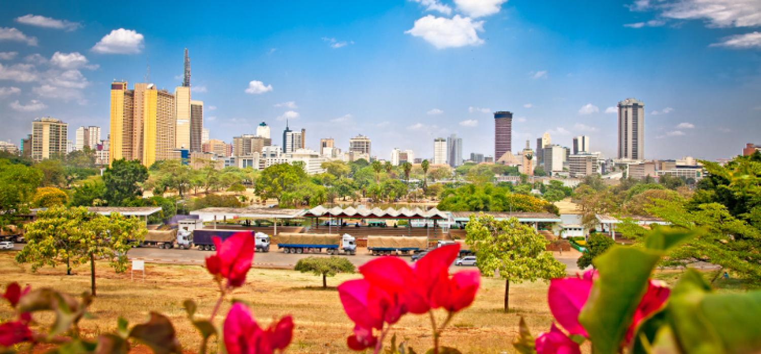 East Africa remains the Continent's fastest growing region