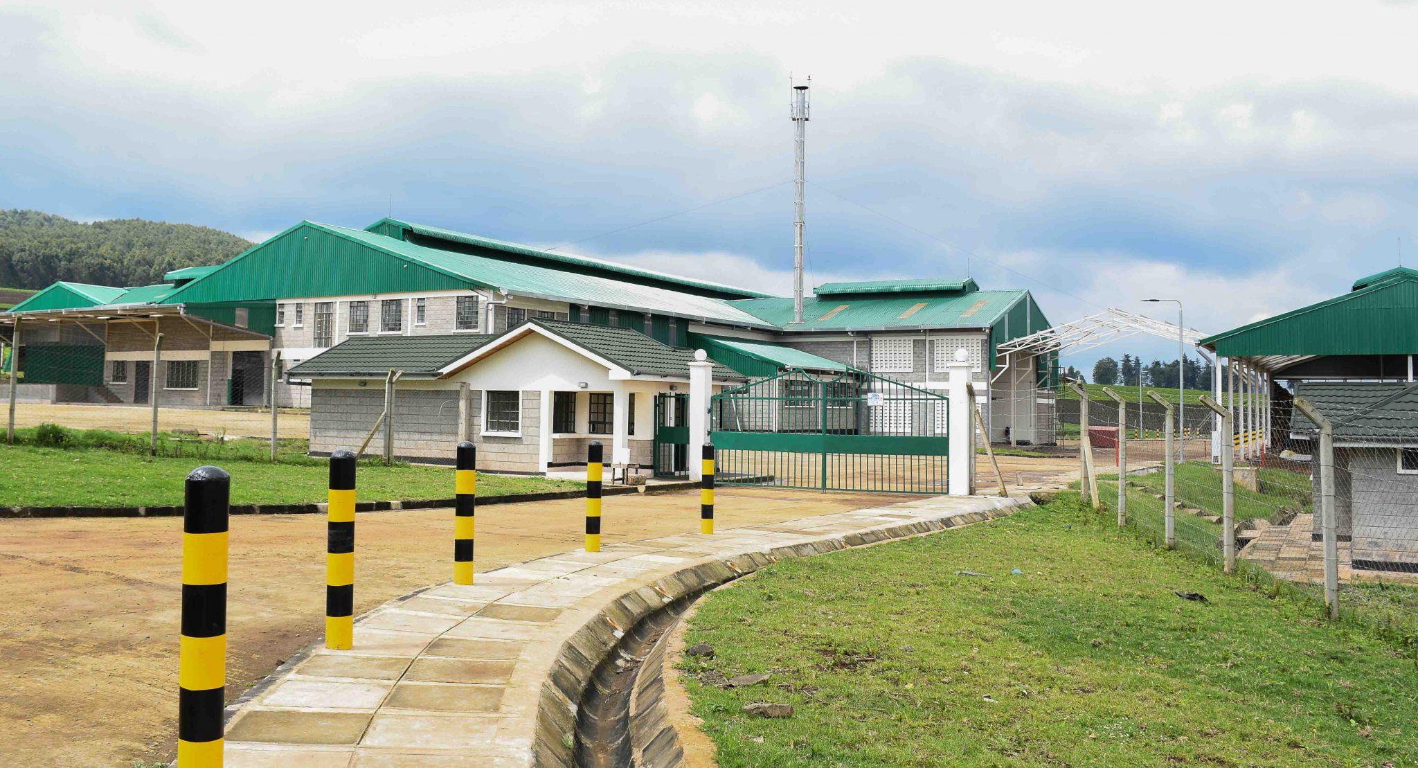 KTDA sets up a new tea factory