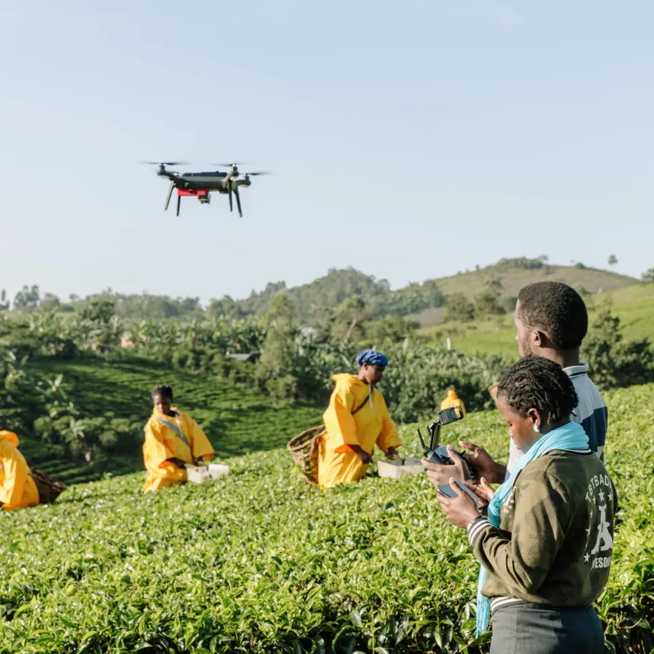Technology adoption will help transform agricultural sector